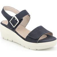 Čevlji  Ženske Sandali & Odprti čevlji Grunland SA1881 Modra