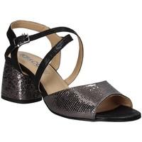 Čevlji  Ženske Sandali & Odprti čevlji IgI&CO 3186200 Črna
