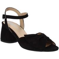 Čevlji  Ženske Sandali & Odprti čevlji IgI&CO 3186533 Črna