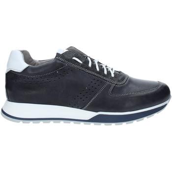 Čevlji  Moški Nizke superge Rogers 5065 Modra