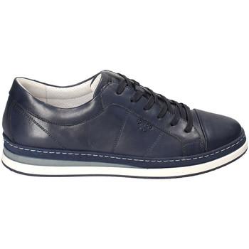 Čevlji  Moški Nizke superge IgI&CO 3138100 Modra