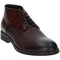 Čevlji  Moški Polškornji Exton 5355 Rjav
