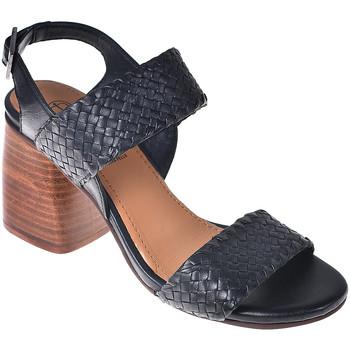 Čevlji  Ženske Sandali & Odprti čevlji Onyx S19-SOX527 Črna