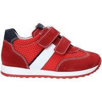 Čevlji  Otroci Nizke superge NeroGiardini P923451M Rdeča