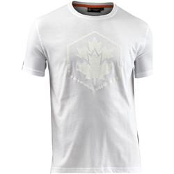 Oblačila Moški Majice s kratkimi rokavi Lumberjack CM60343 005 514 Biely