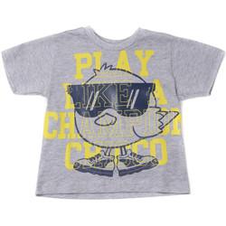 Oblačila Otroci Majice s kratkimi rokavi Chicco 09006918000000 Siva
