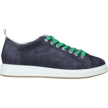 Čevlji  Moški Modne superge IgI&CO 5137911 Modra
