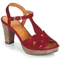 Čevlji  Ženske Sandali & Odprti čevlji Chie Mihara EGEO Bordo