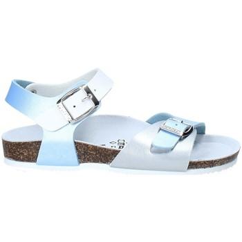 Čevlji  Otroci Sandali & Odprti čevlji Gold Star 8846D Modra