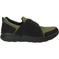 Čevlji  Moški Nizke superge IgI&CO 2126322 Zelena