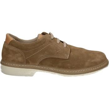 Čevlji  Moški Čevlji Derby Enval 7885 Drugi