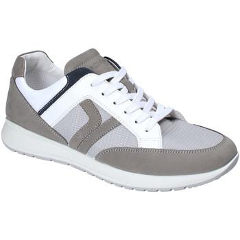 Čevlji  Moški Nizke superge IgI&CO 3125411 Siva