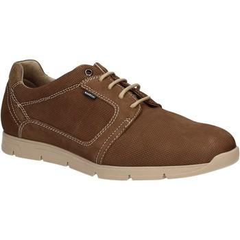 Čevlji  Moški Čevlji Derby Baerchi 5080 Rjav