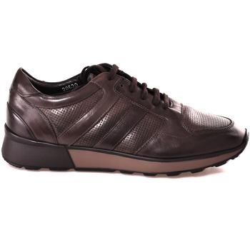 Čevlji  Moški Nizke superge Soldini 20630 2 Rjav