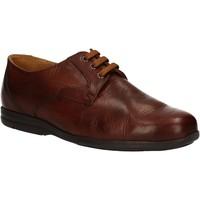 Čevlji  Moški Čevlji Derby Fontana 5685-VI Rjav