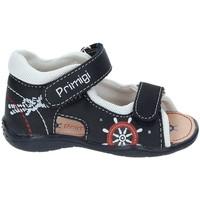 Čevlji  Deklice Športni sandali Primigi 7006 Modra
