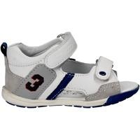 Čevlji  Otroci Sandali & Odprti čevlji Chicco 01057445 Biely