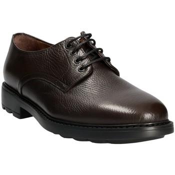 Čevlji  Moški Čevlji Derby Maritan G 111333 Rjav