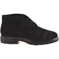 Čevlji  Moški Polškornji IgI&CO 2100833 Črna