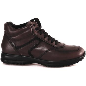Čevlji  Moški Visoke superge IgI&CO 2120911 Rjav