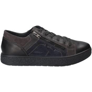 Čevlji  Moški Nizke superge IgI&CO 2131200 Črna