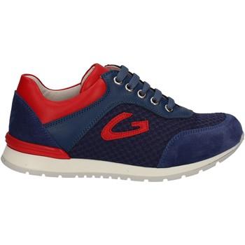 Čevlji  Otroci Nizke superge Alberto Guardiani GK23301 Modra