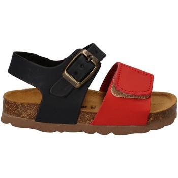 Čevlji  Otroci Sandali & Odprti čevlji Bamboo BAM-218 Rdeča