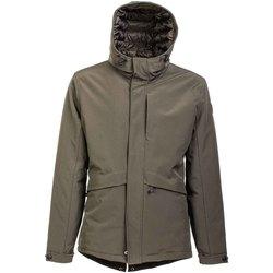 Oblačila Moški Parke U.S Polo Assn. 42758 51919 Zelena