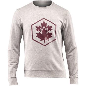Oblačila Moški Puloverji Lumberjack CM60142 001 502 Siva
