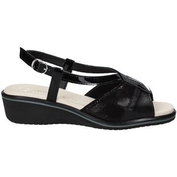 Čevlji  Ženske Sandali & Odprti čevlji Susimoda 270414-01 Črna