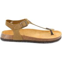 Čevlji  Moški Sandali & Odprti čevlji Grunland SB3221 Rjav