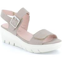 Čevlji  Ženske Sandali & Odprti čevlji Grunland SA1881 Drugi