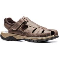 Čevlji  Moški Sandali & Odprti čevlji Stonefly 108693 Rjav