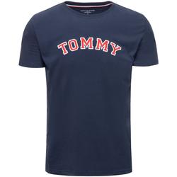 Oblačila Moški Majice s kratkimi rokavi Tommy Hilfiger UM0UM01623 Modra