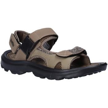 Čevlji  Moški Sandali & Odprti čevlji Lotto T4769 Rjav