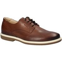Čevlji  Moški Čevlji Derby IgI&CO 1107622 Rjav