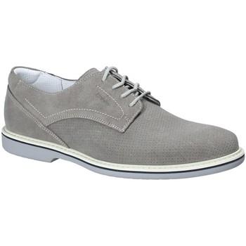Čevlji  Moški Čevlji Derby IgI&CO 1107644 Siva
