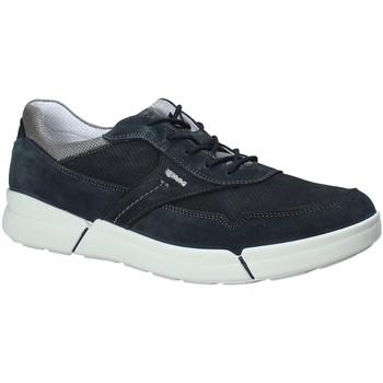 Čevlji  Moški Nizke superge IgI&CO 1126 Modra