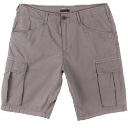 Oblačila Moški Kratke hlače & Bermuda Napapijri N0YHF6 Siva