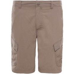 Oblačila Moški Kratke hlače & Bermuda The North Face T0CF729ZG Bež