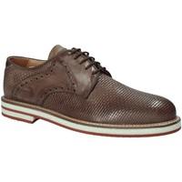 Čevlji  Moški Čevlji Derby Exton 672 Rjav