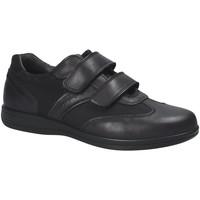 Čevlji  Moški Nizke superge IgI&CO 1101 Črna