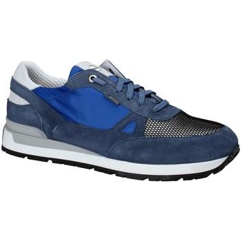 Čevlji  Moški Nizke superge Exton 993 Modra