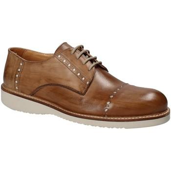 Čevlji  Moški Čevlji Derby Exton 883 Rjav