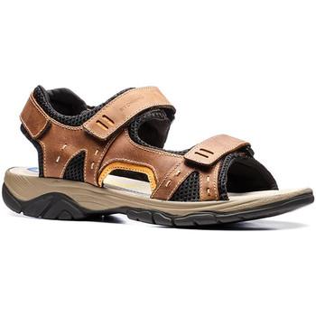 Čevlji  Moški Sandali & Odprti čevlji Stonefly 108692 Rjav
