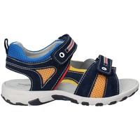 Čevlji  Otroci Sandali & Odprti čevlji NeroGiardini P833160M Modra
