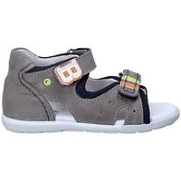 Čevlji  Otroci Sandali & Odprti čevlji Balducci CITA1082 Siva