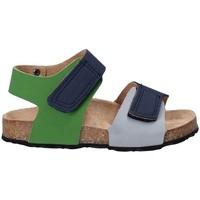 Čevlji  Otroci Sandali & Odprti čevlji Asso 64204 Siva