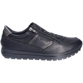 Čevlji  Moški Nizke superge IgI&CO 2136400 Črna