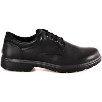 Čevlji  Moški Čevlji Derby Enval 2223600 Črna